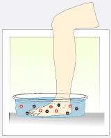 Purifica y Desintoxica con Hidroterapia